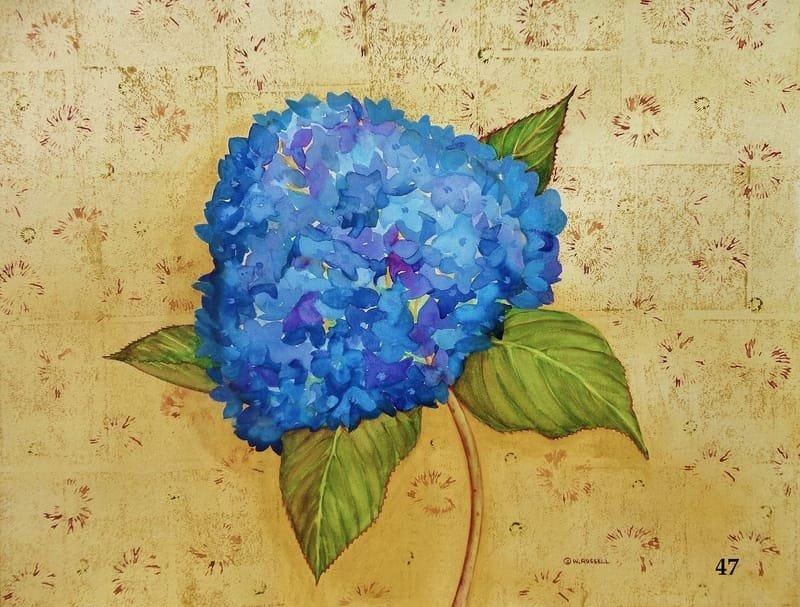Love letters Hydrangea Blue
