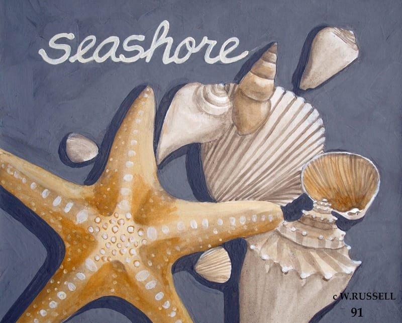 Seashells on Grey Series Seashore