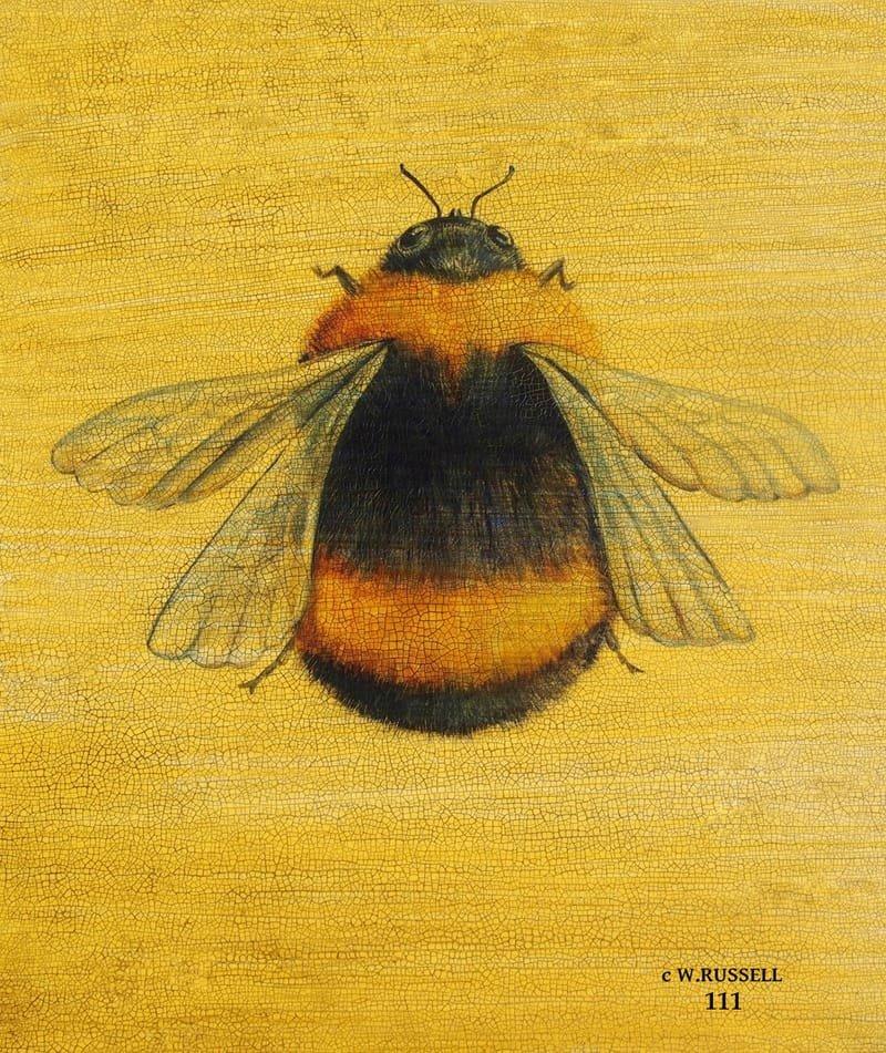 Bee Crackle