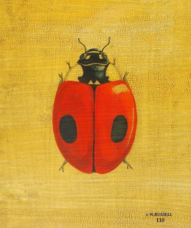 Ladybug Crackled