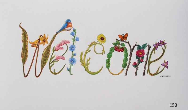 Welcome Sign with Bluebird