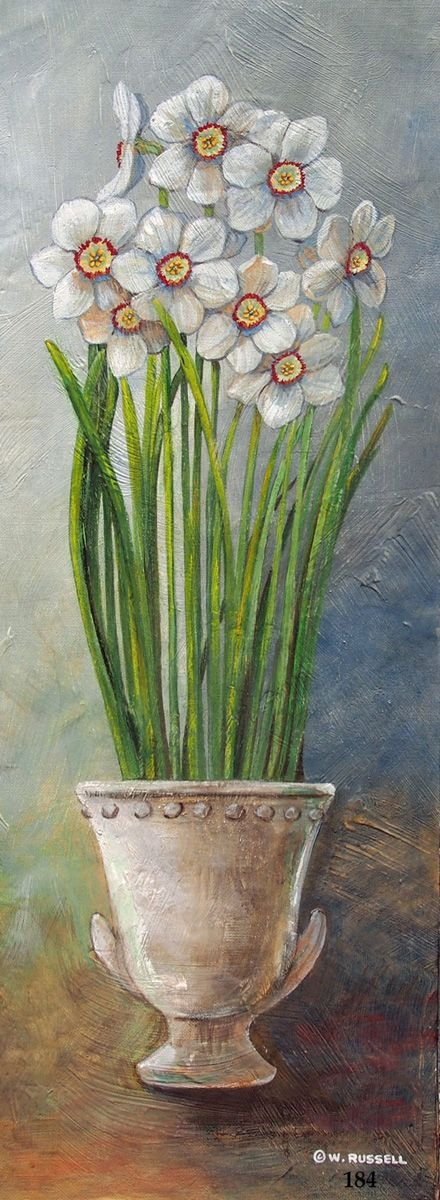Vertical Potted Narcissus