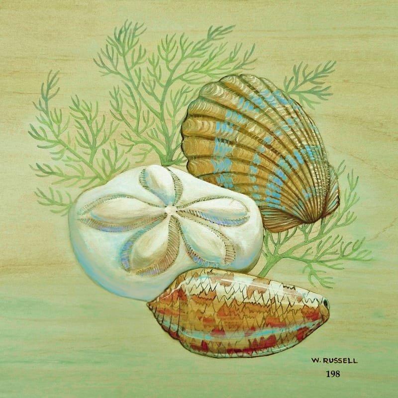 Seashell Trios Series