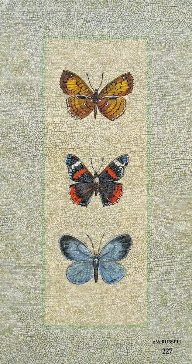 Crackled Butterfly Trio 2