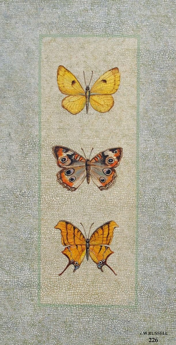 Crackled Butterfly Trio 1