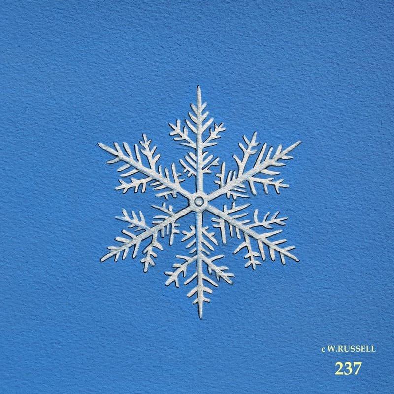 Snowflake on Blue 4