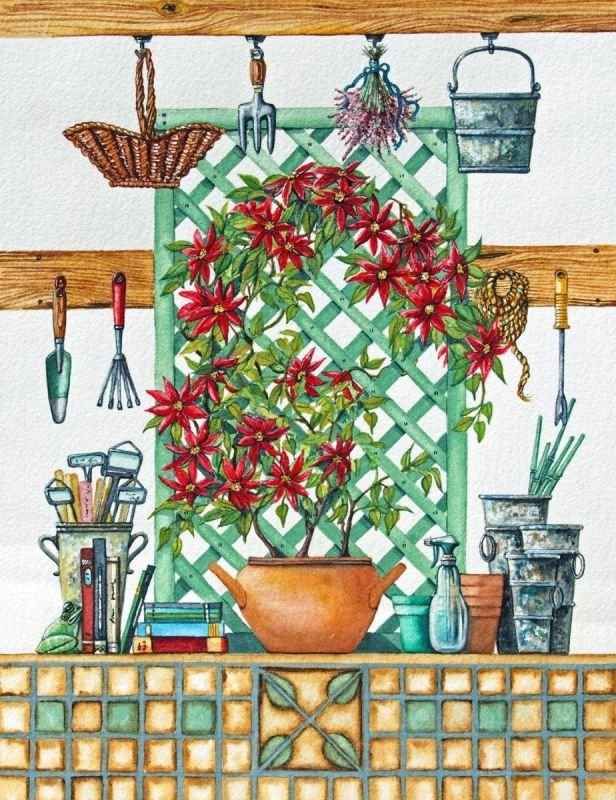 Garden Shed Series with Red Flowering Plant