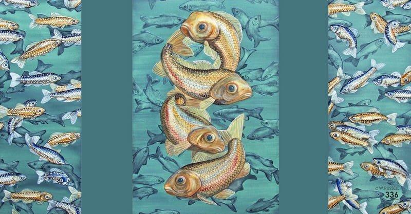 Captive Audience Golden Fish