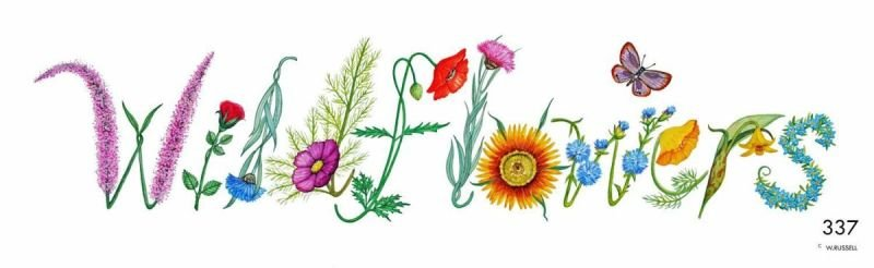 Wildflowers Decorative Lettering