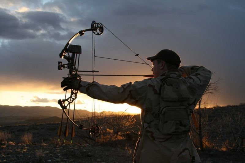 Tips to Choosing the Best Compound Bow