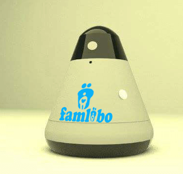 "Famlibo is a team of professionals who strive for a common goal. Our team includes engineers, marketers and designers with strong management. Most of the Team has been with us from the start of our highly ambitious famlibo project. They were young university educated specialists and famlibo was their first serious challenge. We have been fortunate that they had a spirit and like-mindedness that turned out to be far more important than their inexperience. What they accomplished this years has been truly amazing. We found that everyone in team learns quickly and we appreciate that they do not understand the word ""impossible"". Technical problems that seem impossible are frequently solved by using unique and innovative ideas. How is this? There are few restrictions. Members of our team are encouraged to try everything practical to solve a problem. Their contributions of creativity, imagination, and willingness has resulted in incredibly innovative solutions. The Team Behind famlibo  The executive team of famlibo, who each have a depth of experience in business not typically seen in an early stage company. The team brings to the table backgrounds in robotics, speech technology, artificial intelligence, user experience design, manufacturing and supply chain, and developer and platform strategy. The team understands and has seen first hand the nature of building a high-growth company. Empower Your Business with Conversational User Experience Famlibo developed a proprietary Natural Language Processing framework that enables the development of robust, practical and conversational interfaces that actually work The NLP framework facilitates building conversational user interfaces with a high level of stability, providing users with the ability to use natural language commands and recover from possible conversational errors. The proprietary template-matching engine and the system's special architecture design allow developers to build truly conversational, dialog-based interfaces. Due to the framework's approach to template design, developers are able to create dialog flow in a very efficient and lean manner. NATURAL LANGUAGE The NLP technology provides users with the ability to use natural language commands and recover from possible conversational errors. DECISION CHANGING The technology allows the user to change the last decision or choice made, within the same dialog and without losing the context of the conversation. TOPIC SWITCHING  The user is able to switch from one topic to another in the middle of the conversation and return back to the previous place in the dialog. ONE-TURN RESULT The user can simply skip all the intermediary steps and give a full request in one turn, instead of going step-by-step through the flow.   The result of our team's willingness to listen to unique ideas and experiment is the essence of Famlibo – The Family Friendly innovative smart home & security personal Assistant"