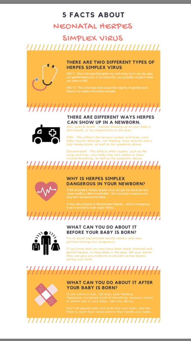 HSV infection - PEM Infographics