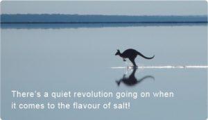 Australian Lake Salt Crystals