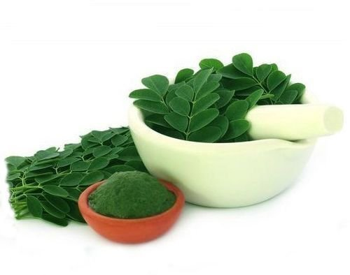 Magical Moringa - Pure Plant Protein