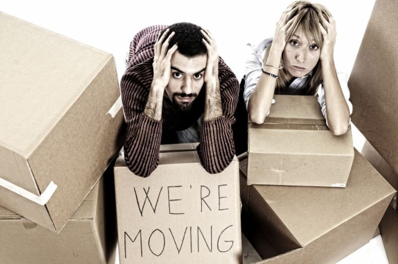Where to Get the Best Moving Company?