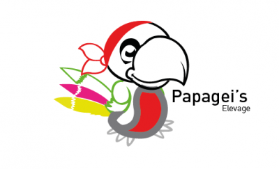 Papagei's