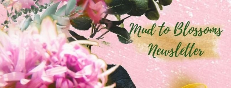 The Mud to Blossoms Newsletter