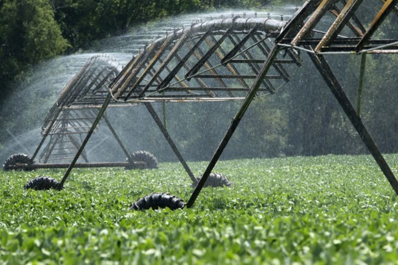 Irrigation, Food & Water Management