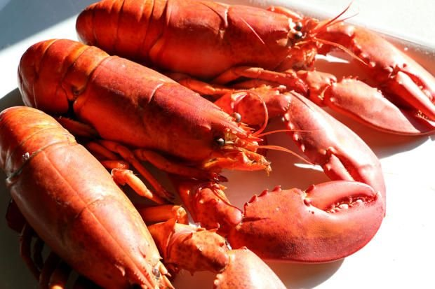 Tips for Preparing Crab Legs and Lobster Tails