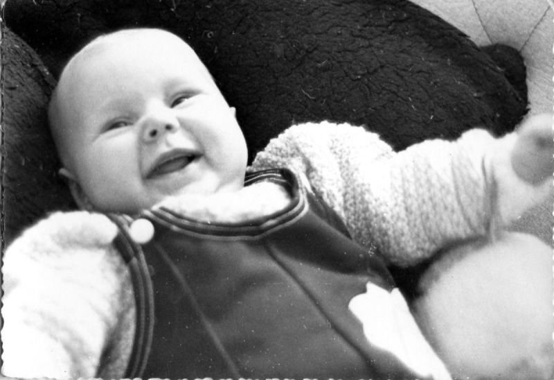 Baby Terrie