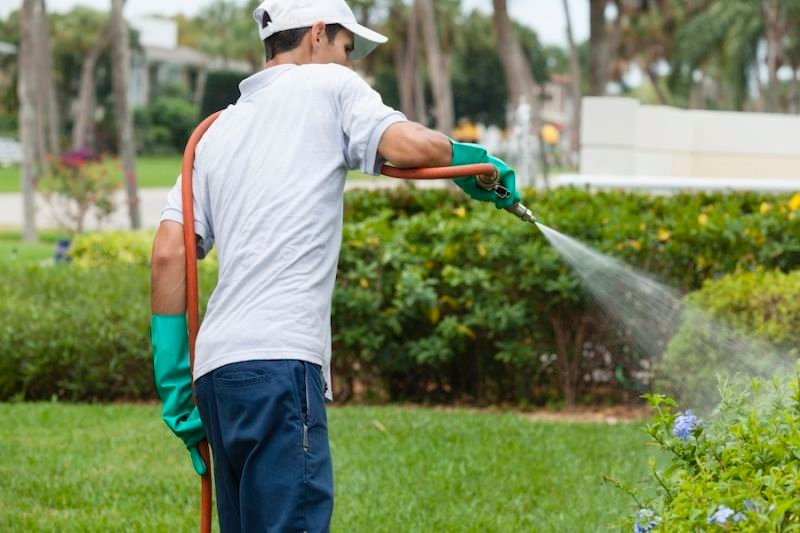 Benefits of Hiring a Pest Control Company