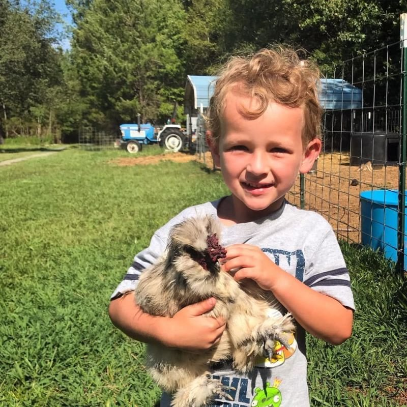 Educational Farm Tours