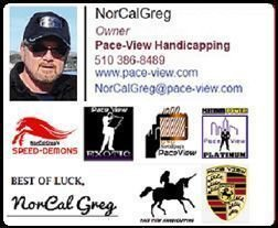 PACE-VIEW HANDICAPPING