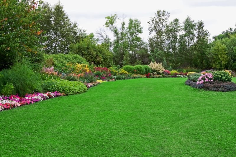 Reasons Why Hiring a Landscape Design Company is Good for Your Home