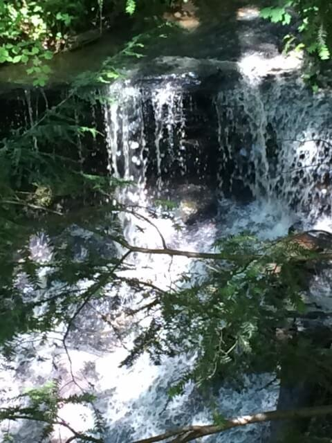 WATERFALL IN OUR WOODS