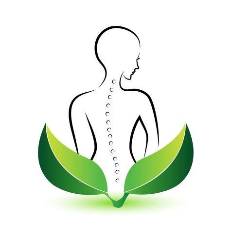 Chiropractic and Acupuncture Care