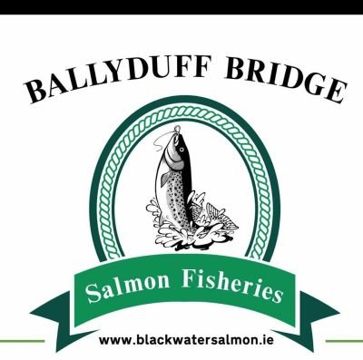 Ballyduff Bridge Salmon Fishery