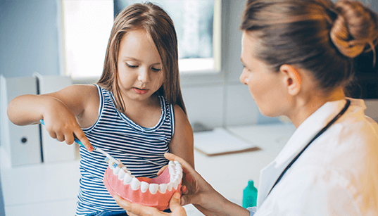 Connection Between Dental Care and Overall Health
