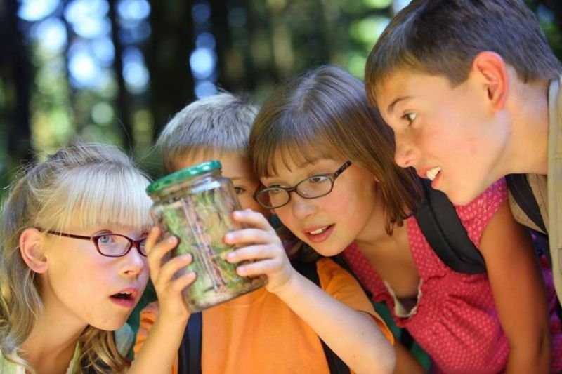 Tips for Picking the Right Summer Camp for Kids