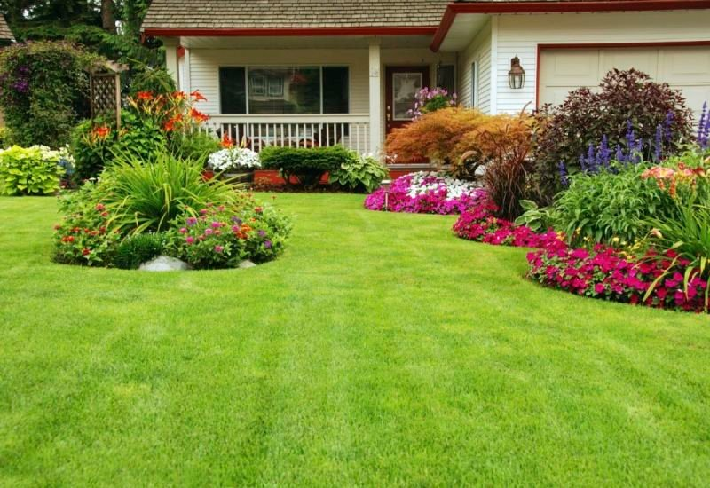 Benefits of Acquiring Professional Lawn Care, Lawn Care, Hardscapes